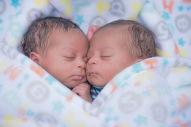 Twin babies boy